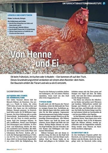 Von Henne und Ei