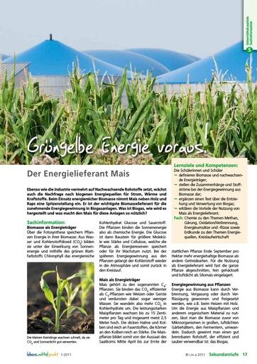 Grüngelbe Energie voraus: Der Energielieferant Mais