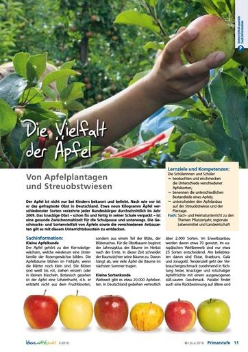 Die Vielfalt der Äpfel - Von Apfelplantagen und Streuobstwiesen