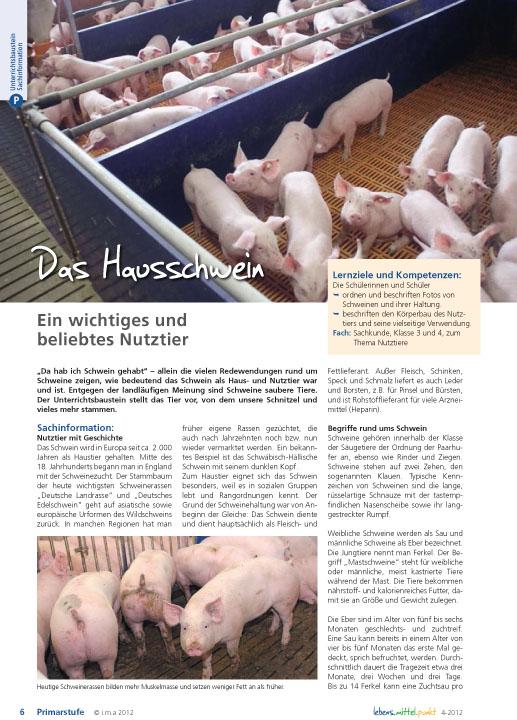 Das Hausschwein - Ein wichtiges und beliebtes Nutztier