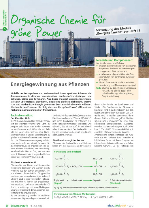 Organische Chemie für grüne Power - Energiegewinnung aus Pflanzen