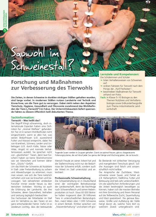 Sauwohl im Schweinestall? Forschung und Maßnahmen zur Verbesserung des Tierwohls