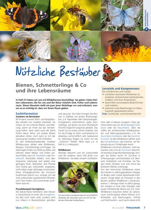 Nützliche Bestäuber - Bienen, Schmetterlinge & Co und ihre Lebensräume