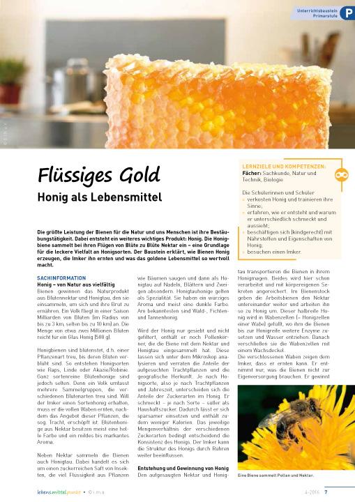 Flüssiges Gold - Honig als Lebensmittel