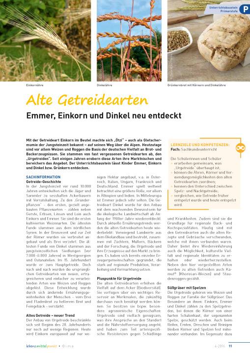 Alte Getreidearten - Emmer, Einkorn und Dinkel neu entdeckt