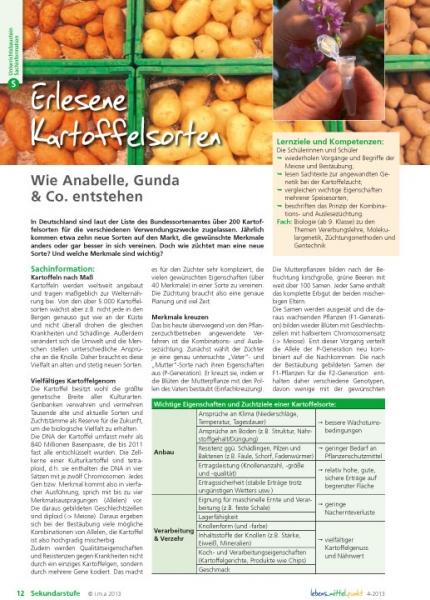 Erlesene Kartoffelsorten