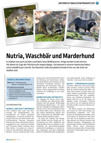 Nutria, Waschbär und Marderhund