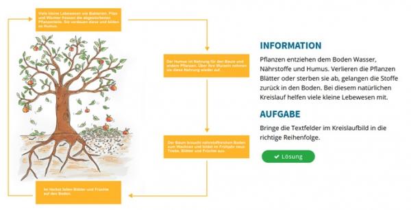 Komposthaufen und Biotonne - der Stoffkreislauf der Natur